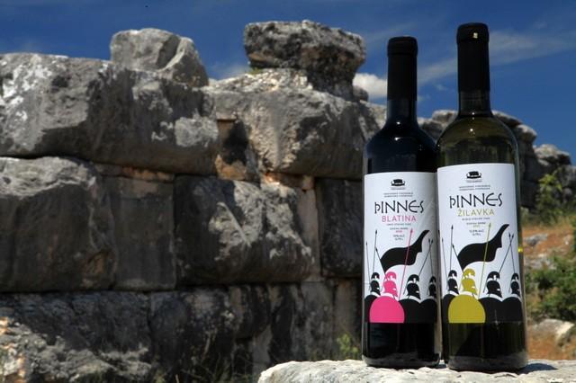 Vinarsko vinogradarska zadruga VINARIJA DAORSON